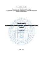 prikaz prve stranice dokumenta Kombinirani plinsko i parno-turbinski propulzijski sustavi